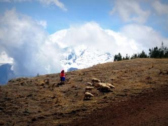 Diffusion du quechua