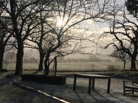 Le soleil filtré par la brume
